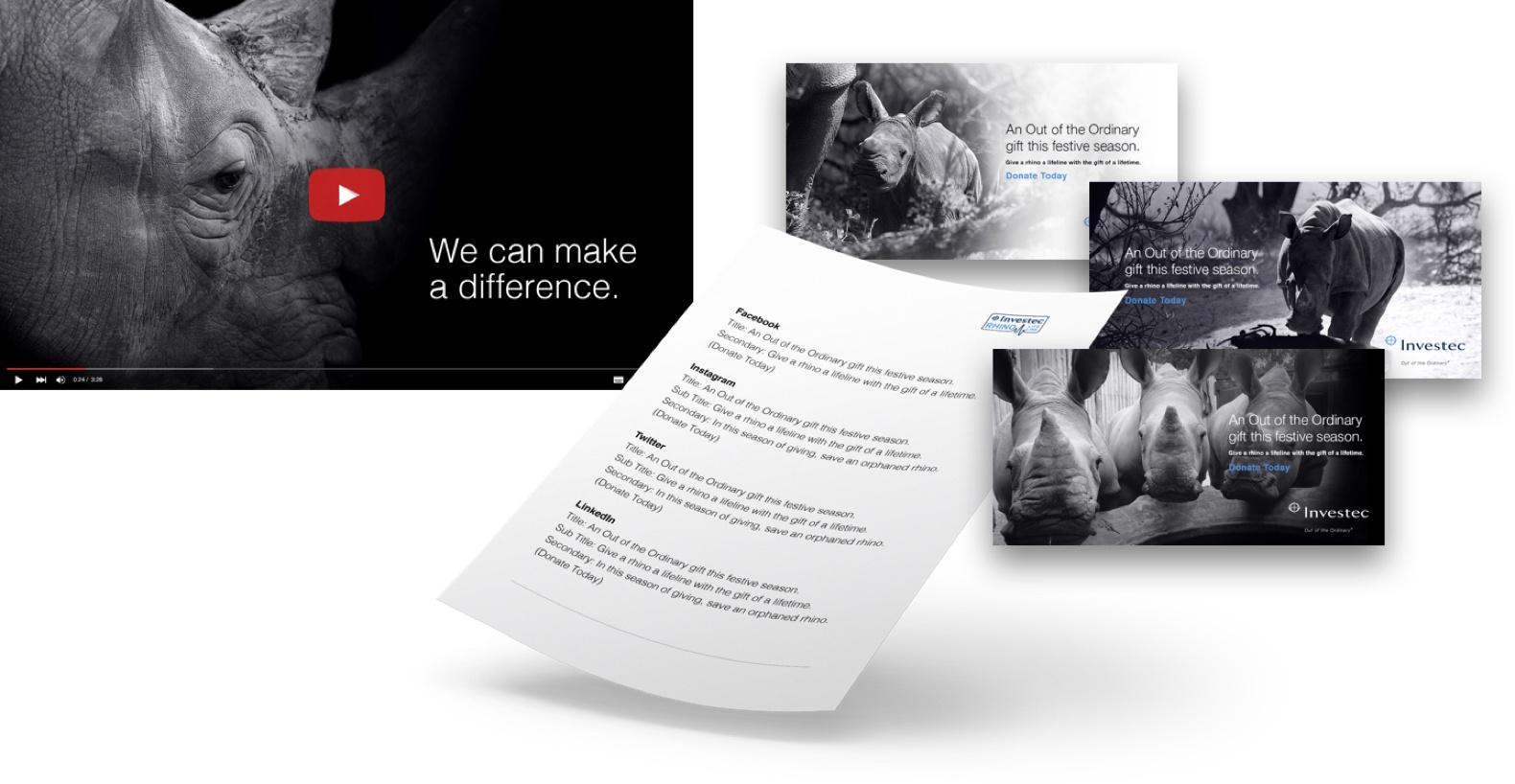 Investec Rhino Content@2x.jpg