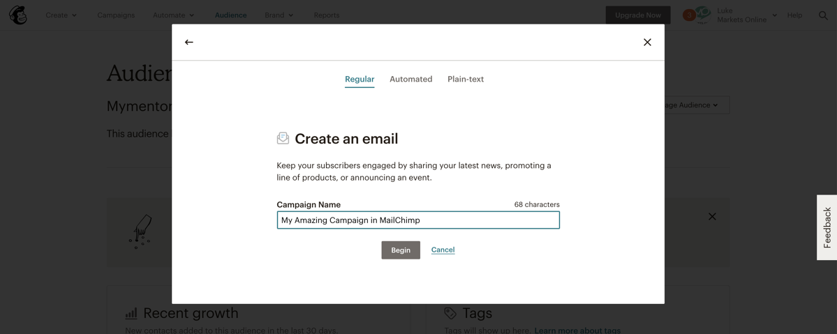 MailChimp - Types of email