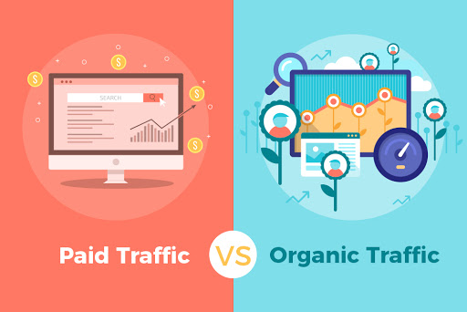 Paid vs Organic Search